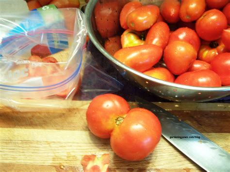 Freezing Tomatoes From The Garden by How To Preserve Tomatoes Gardening Jones