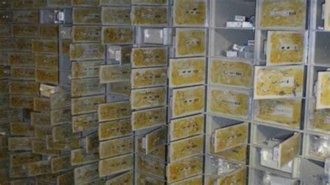 cassette di sicurezza bancarie appartamenti comprati con i soldi al caveau