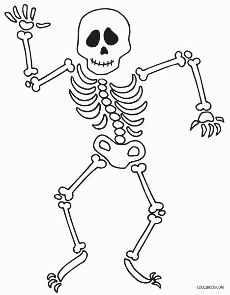 human bone coloring coloring pages
