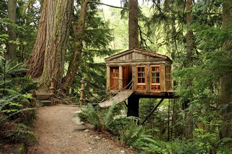 Treehouse Plumbing by Oh Drifter A Home In The Trees Oh Drifter