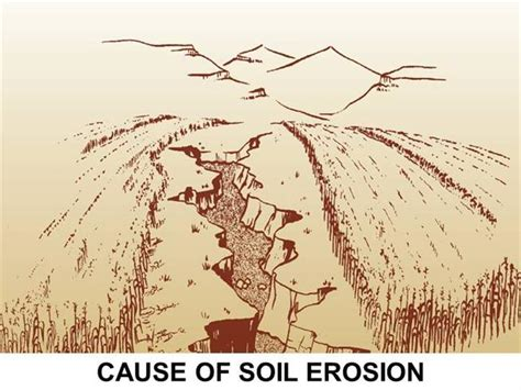 erosion diagram cause of soil erosion authorstream