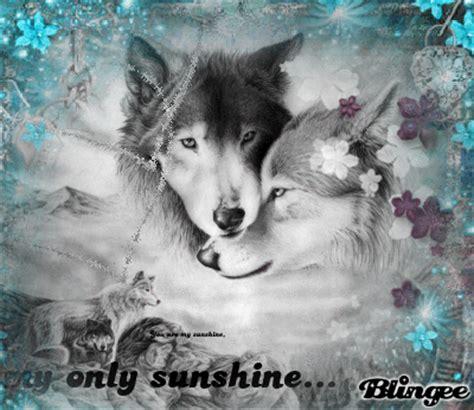 imagenes de negro lobo fotos animadas lobos en blanco y negro para compartir