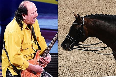 carlos santana biography in spanish a horse danced to santana s smooth at the olympics