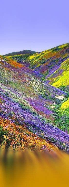 himalayas tibet himalayas tibet group favorite landscapes pinterest