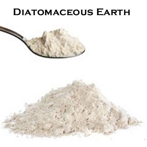 Diatomaceous Earth Detox For Withdrawal by Holistic Dentistry Nyc Detox