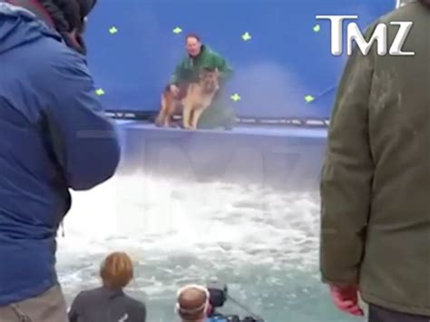animal abuse a s purpose shows possible animal abuse on the set of a s purpose theindychannel