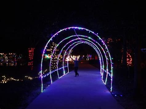 Gulf Zoo Lights one foto di the gulf zoo gulf tripadvisor