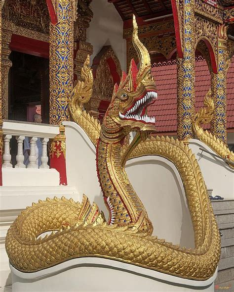 naga tattoo chiang mai prices 87 best serpants and thailand art images on pinterest