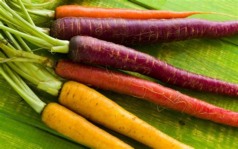 colored carrots are there any benefits to multi colored carrots