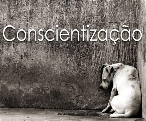 imagenes tristes x abandono somos loucos por cachorros n 227 o abandone seus animais