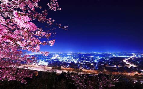 wallpaper bunga sakura desktop sakura backgrounds wallpaper cave