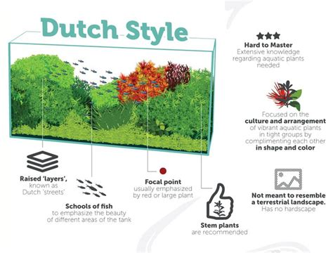 aquascape dutch style 12 best dutch aquascaping style tag images on pinterest