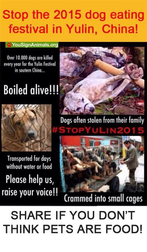stop f king tweeting and go the f k to sleep mr president books 10 images about stop yulin on south korea