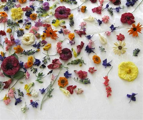 Wedding Aisle With Tables by Dried Flowers Wedding Confetti Centerpieces Real