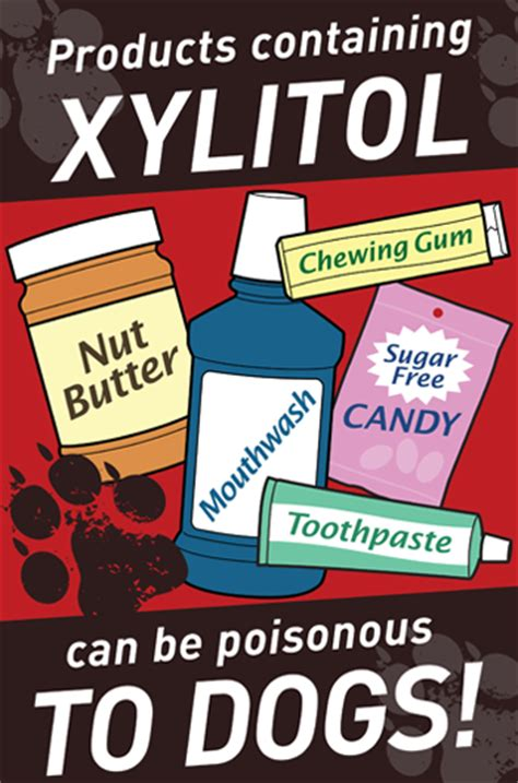 xylitol and dogs xylitol and your danger paws pet guardian of america