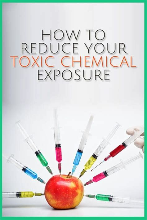 Detox For Chemical Exposure by 375 Best Toxicity Detoxification Images On