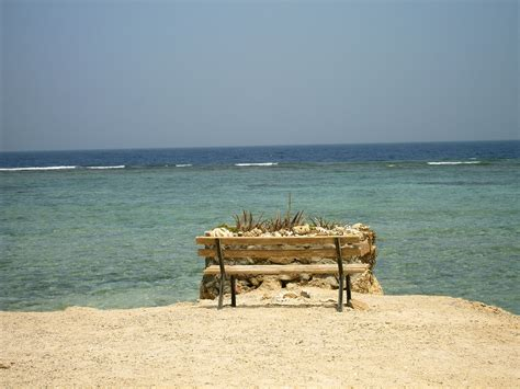bench on the beach bench on the beach in the resort of el quseir egypt wallpapers and images