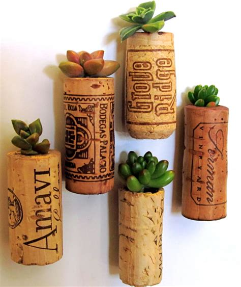 cork succulent planter 5 succulent wine cork planters mounted on by