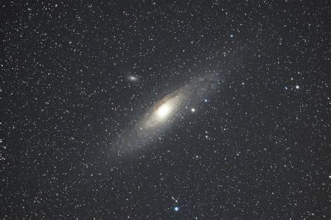 nikon  array  stars awaits  challenge