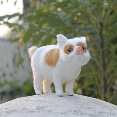 Mini Pet popular mini pet pigs buy cheap mini pet pigs lots from china mini pet pigs suppliers on