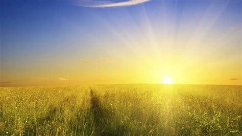 Sun In The Sky Wallpaper