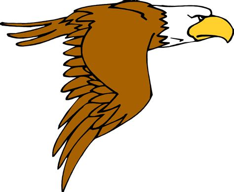cartoon eagle wallpaper pictures of cartoon eagles clipart best