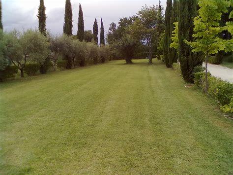 costo giardiniere servizi giardinaggio in abbonamento giardino3g