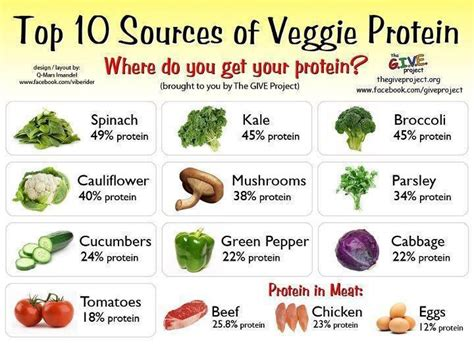 sources of protein is animal protein a carcinogen environmentalhealth