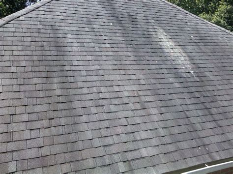 on roof moss and algae stains on your roof hillsboro roofing contractor fivecoat roofing