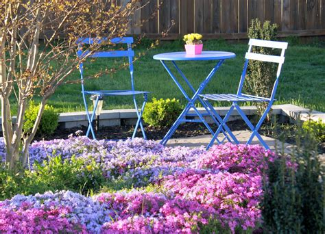 backyard landscape photos colorful spring garden afternoon artist