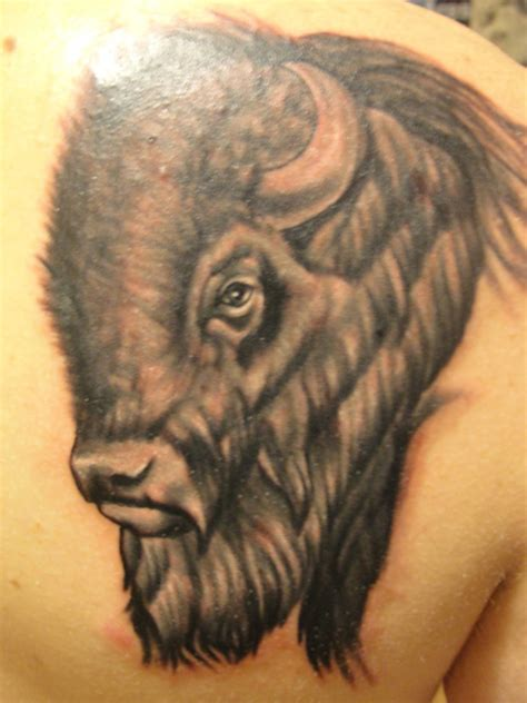bison tattoo picture at checkoutmyink com
