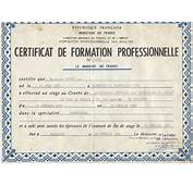 Modele Certificat Formation Professionnelle  Document Online