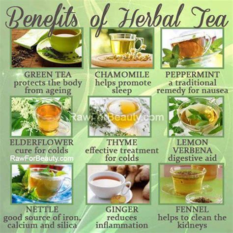to health with herbal tea drink to a healthier books the health benefits of tea third monk