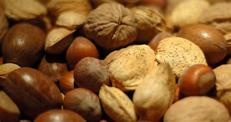 alimentos que contienen tript fano tript 243 fano alimentos que dan felicidad