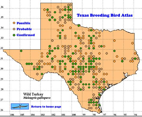 turkey texas map turkey the texas bird atlas