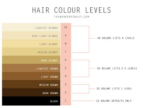 hair color levels hair coloring chemistry explained including a detailed
