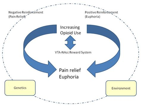 addiction diagram addiction cycle diagram