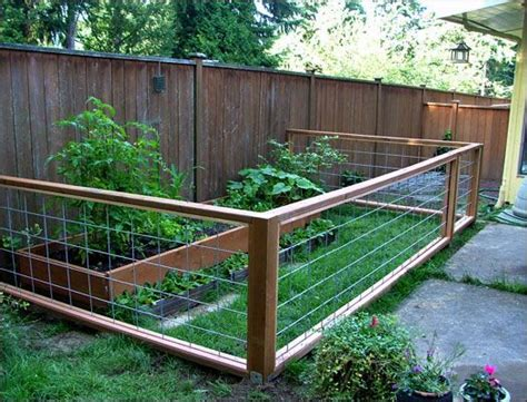 12 best dog friendly proof gardens images on pinterest