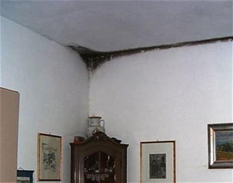 muffa pareti interne muffa e umidit 224 sui muri di una casa nuova dovuta a