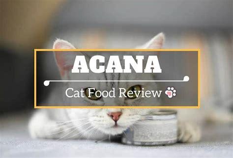 abound food reviews acana cat food reviews cats