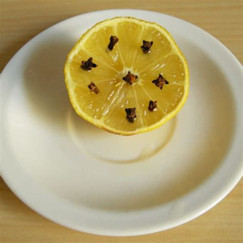 repel flies mosquitoes and lemon on pinterest