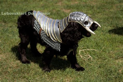 armour dogs battle armor turns fido into a mutt at arms cnet
