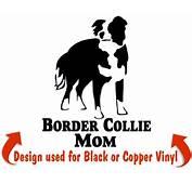 Border Collie Dog Stickers &amp Decals  NickerStickers