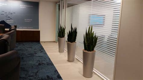 Interior Plants For Credit Union Plantopia Interior Room And Board Planters