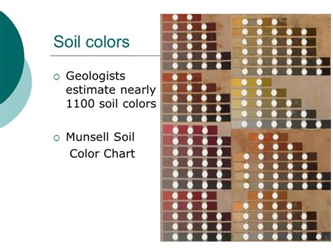 soil color chart soils minerals wood other vegetative matter ppt