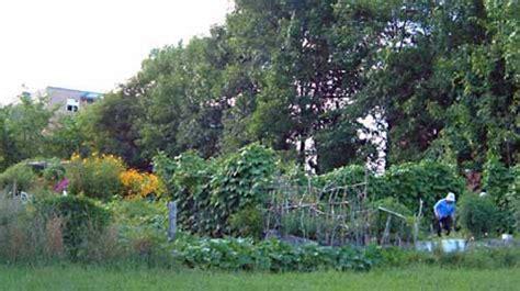 Backyard Vegetable Gardens Community Gardening Wikipedia