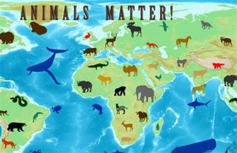 Animal World 4 celebrate world animal day on 4 october mapmyway