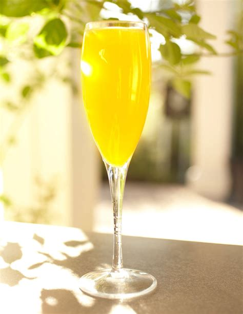 6 chagne brunch cocktails recipes for chagne cocktails