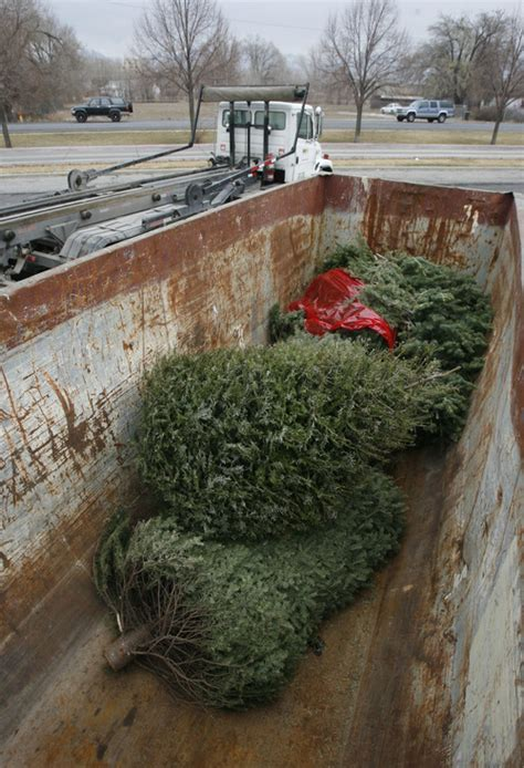 christmas tree lots in salt lake city how to give your tree the heave ho ho the salt lake tribune