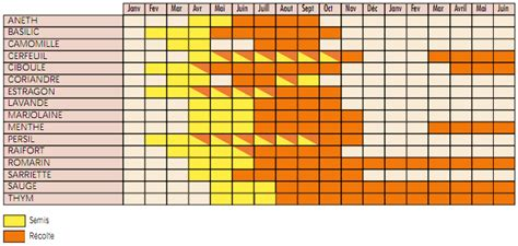 calendrier des semis et r 233 colte